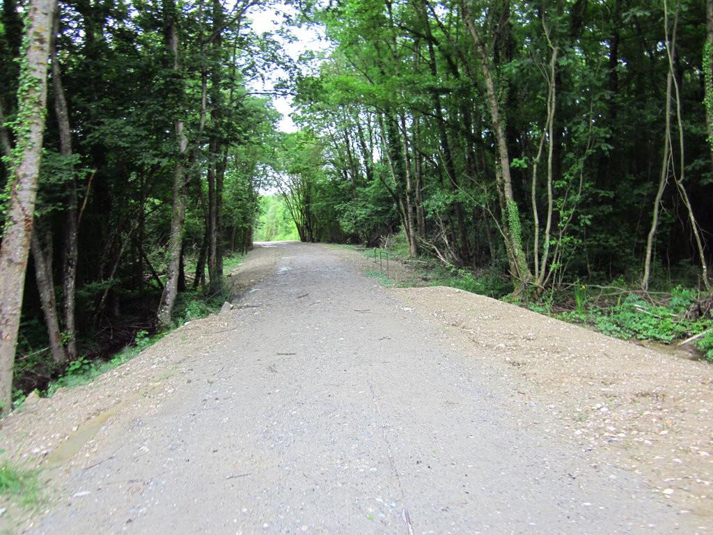 De beaux passages en forêt sur le talus de l'ancienne voie ferrée. Les ouvrages franchissant les ruisseaux sont conservés.