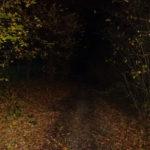 Rendre les obstacles visibles la nuit