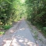 Travaux sur la piste cyclable entre Gex et Grilly